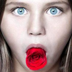 O Enigma da Rosa: Quais os seus segredos?